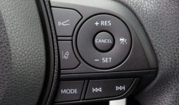 2019 Toyota RAV4 LE 2.5L SUV full